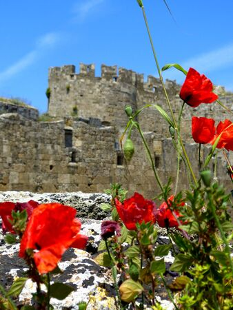 Grand master palace in Rhodes City, Rhodes - Greece