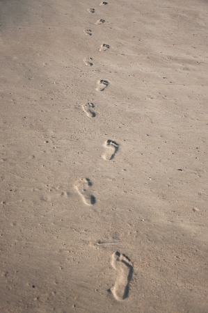 Row of human footprints on wet shelly sand