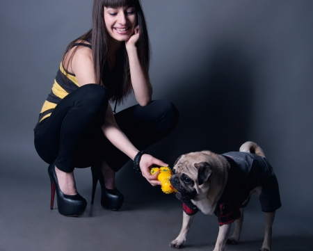 Young beautiful smiling model woman in black leggings, stripped t-shirt, high heels with her favorite pug dog pet in funny costume playing and biting a rubber toy against grey background