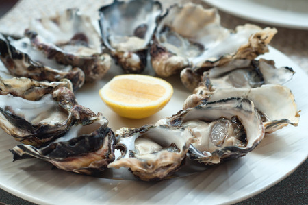 Fresh opened oysters on a plate with lemon slice. Selective focus, main focus of oysters in the front
