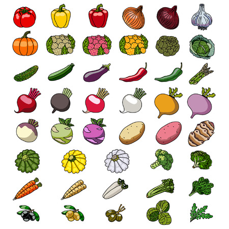 Vector icons of vegetables. Sketches.