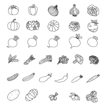 野菜のベクター アイコン。製品の要素。