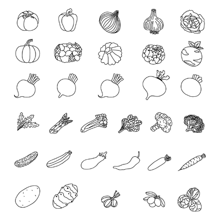 A Vector icons of vegetables. Elements of products. Illustration