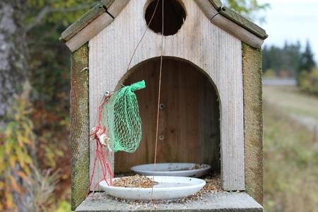 house bird and trees Stock Photo - 9180438