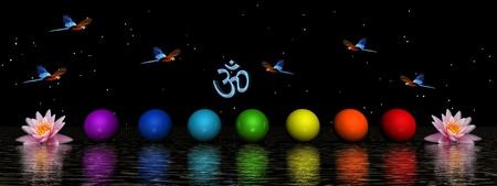 aura energy: chakra e uccelli e di AuM
