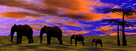 elephants and sky orange photo