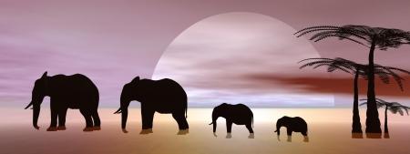 elephants and landscape photo