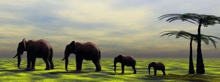 pozo de agua: elefantes y palmeras Foto de archivo