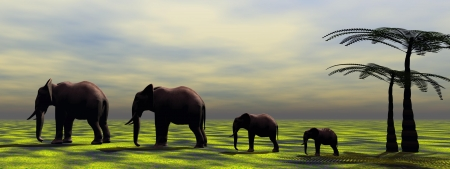 herbivorous animals: elephants and palms Stock Photo