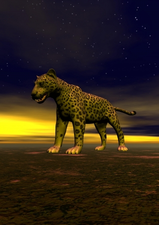 panther and sky yellow photo