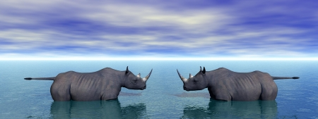 rhinoceros and sky blue photo