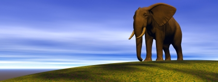 elephant and hill green Stock Photo