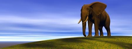 olifant en heuvel, groen Stockfoto