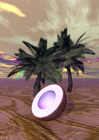two palms and coconut photo