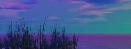 grass black and sky