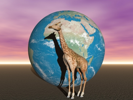 earth africa and giraffe photo