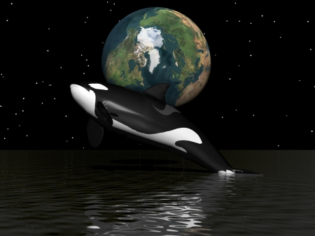 orca and earth photo
