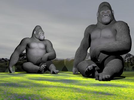 silverback: A gorilla who observe Stock Photo