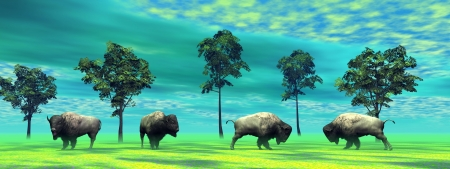 north dakota: bisons and trees and sky green Stock Photo