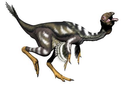 Caudipteryx dinosaur in white background - 3d render photo