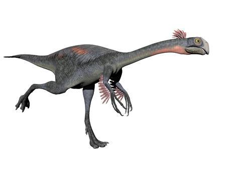 extinction: gigantoraptor dinosaur in white background - 3d render Stock Photo