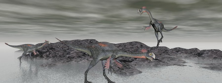 three gigantoraptor dinosaur and hill black