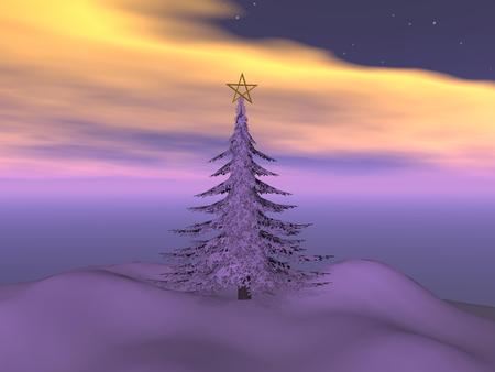 magnificent: Magnificent Christmas tree with a star