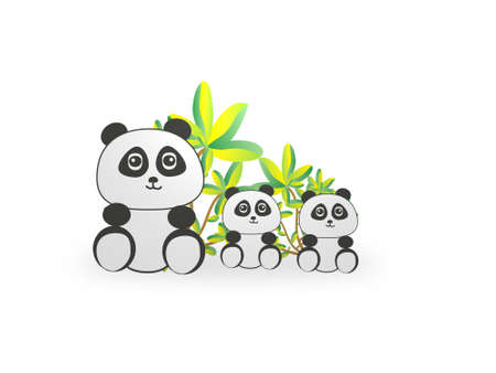 Very nice panda family on white background - 3d rendering Banque d'images