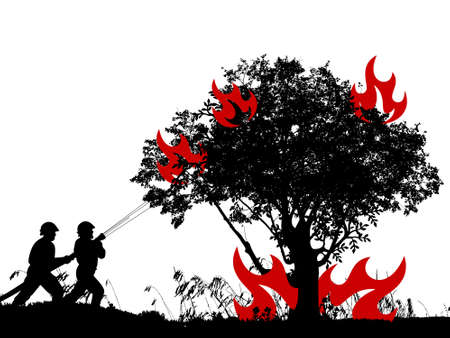 forest fire on white background - 3d rendering Stock Photo