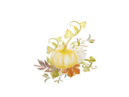 very beautiful pumpkin and autumn decoration on white background - 3d rendering Banque d'images