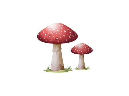 very beautiful mushrooms on white background - 3d rendering
