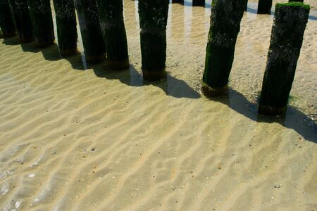wooden groynes at the beach in Zeeland, Holland on a sunny day