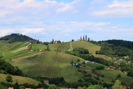 Rural landscape in Styria, Austria, vineyards and hills in summer, wine route in Styria