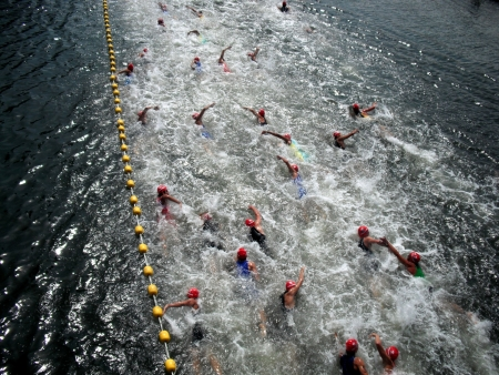 Swimmers  photo