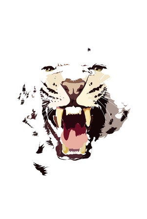 Baring leopard illustration  Vector