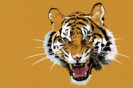 one animal: Close up of a beautiful Siberian Tiger. Illustration
