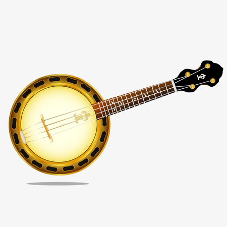 Irish national banjo instrument. Vector image on a wight background.