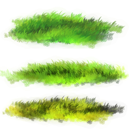 Lawn grass illustration. The illustration is made in Photoshop.
