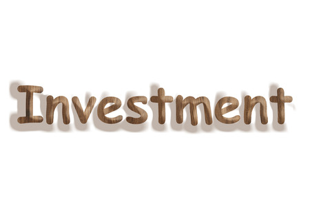 Business concept   wooden word investment on white background