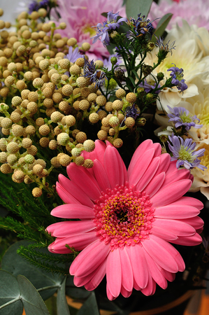 Pink Gerberas in a bouquet with colorful flowers