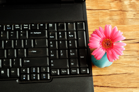 Laptop with a pink Gerbera in a blue flower pot