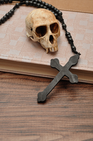 old paper background: Vervet monkey skull with rosary beads on top of an old book