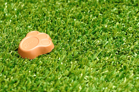 Kwa Zulu Natal - 4 April 2017 - Lindt Bunny paw for easter displayed on artificial grass Stock Photo
