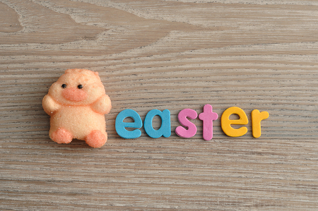A chicken shape marshmallow with the word easter