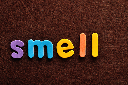 The word smell on a brown background Фото со стока