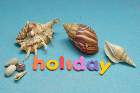 A variety of seashells displayed with the word holiday Stock Photo