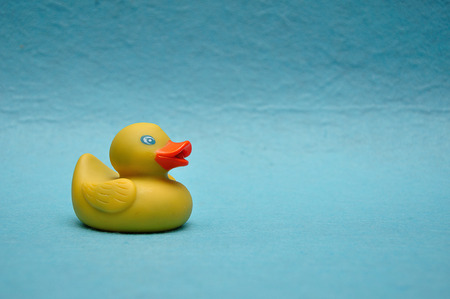 A rubber duck on a blue background