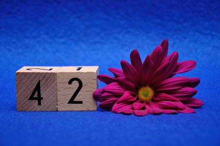 Number forty two with a purple daisy on a blue background