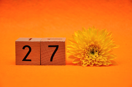 Number twenty seven with a yellow daisy on an orange background