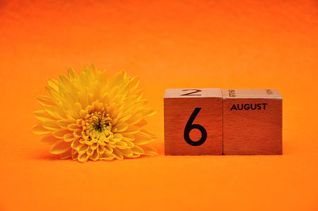 6 August on wooden blocks with a yellow daisy on an orange background